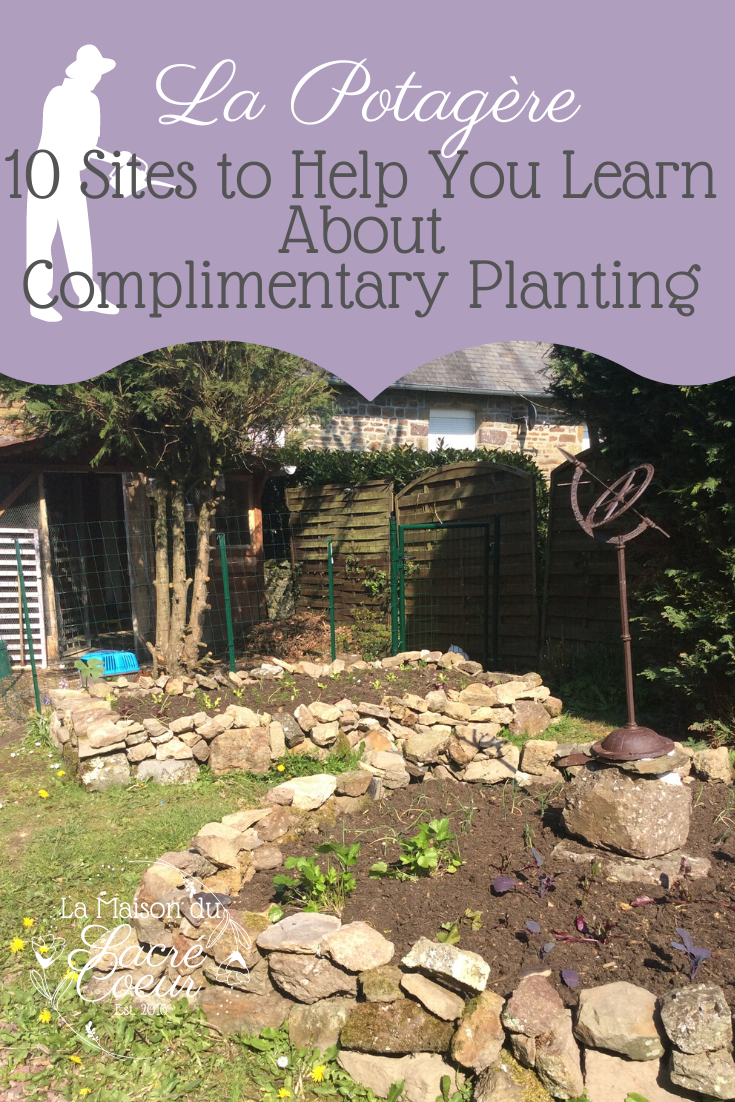 10 Sites to Help You Learn About Complimentary Planting