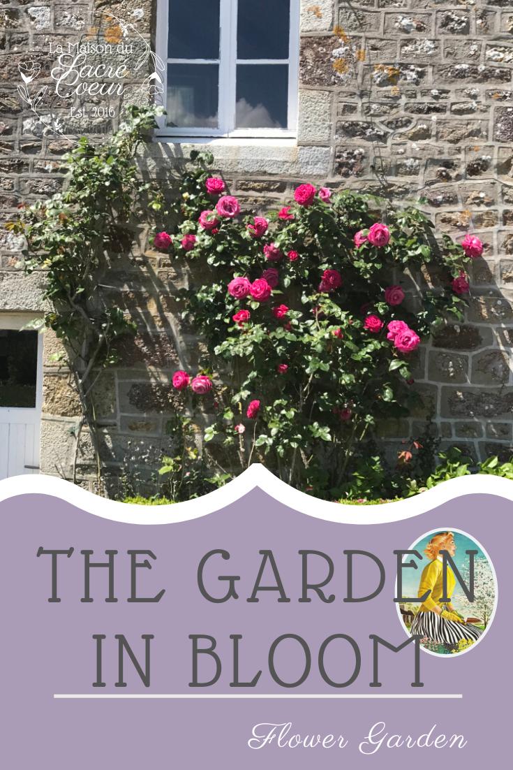 The Garden in Bloom