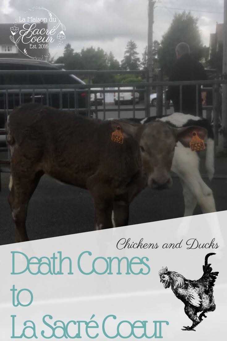 Death Comes to La Sacre Coeur